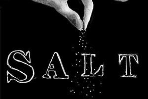 Salt Trio concert