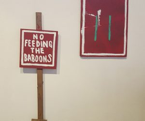 Echo 2018 - Jon Konkol - No feeding the Baboons