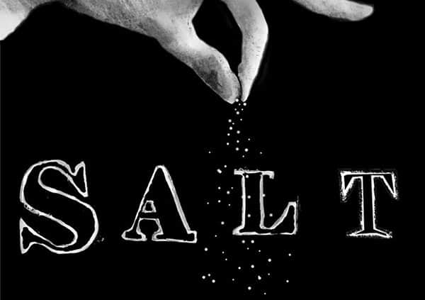 SALT Shasta Ellenbogen